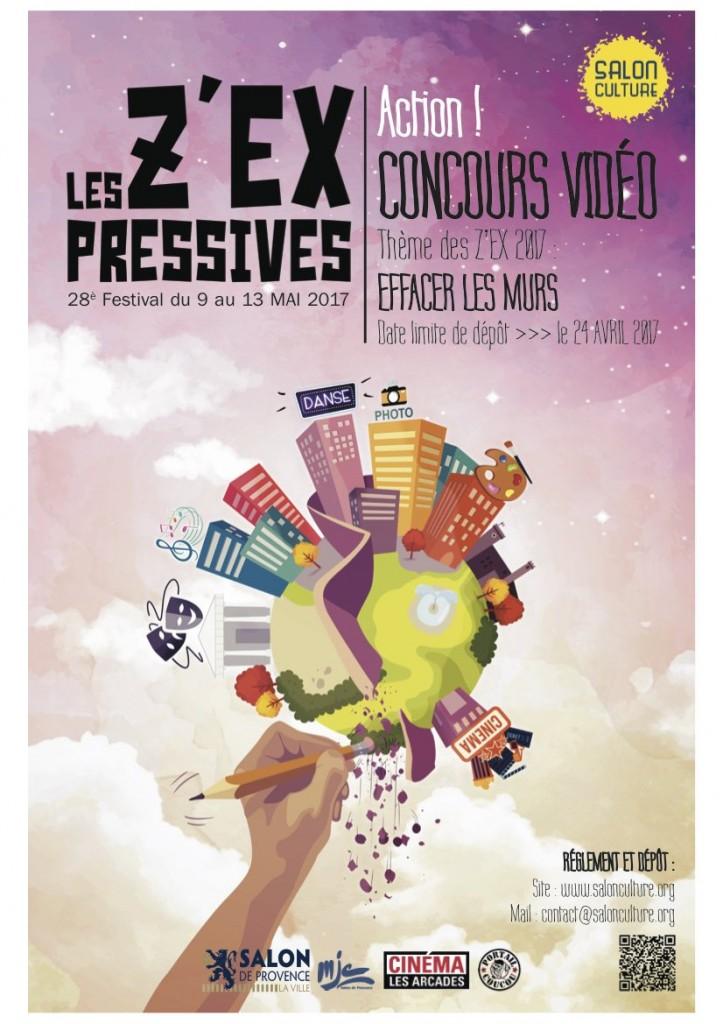 lesZEX2017-AFFICHE vidéo